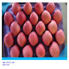 chinese fresh delicious Fuji apple red apple