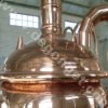 red copper beer machine 300l