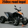 Racing Atv Quad Bike 250cc EEC