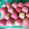 Qinguan apple(64/72/80/88/100/113/125 pieces/20kg CTN)