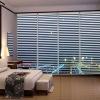 Window Venetian shutters
