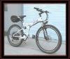 china supplier of e-bike