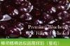 Premium Blueberry Pie Filling