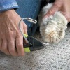 Amazing Dog nail clipper