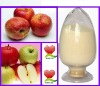 apple fruit extract polyphenols