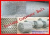 hot-dipped Galvanized conveyor Belt
