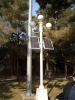 solar street lamp with mono/poly solar panel and optional light source