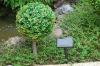 Outdoor artificial trees/Solar artificial plant/Artificial lemon tree(SOL8273)