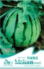 Fruit plant seed--Water melon seed