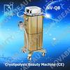 2012 popular Cryolipolysis,NV-Q8(CE approval )