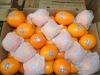 Navel orange with good quality