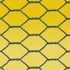Hexagonal Wire Mesh of double twist