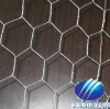 galvanized iron wire netting (from factory)