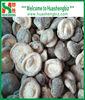 IQF frozen whole shiitake Mushroom