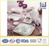 White Porcelain Dinnerware/Tableware/Hotelware set