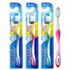 Hight quality dupont bristles toothbrush