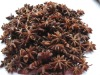 5-4 Dried star aniseed
