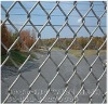 "2""*2""PVC Coated Chain Link Fence"