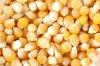 forzen fresh corn kernel