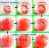 growing ball