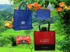 Hote Sale Foldable Non Woven Shopping Bag