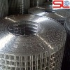Hot sale stainless steel welded wire mesh(Factory)