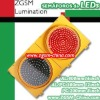 PC housing led traffic light for South America market