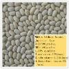 White kidney beans,japanese type