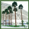 Artificial washington palm tree in Airport