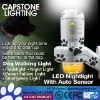 Beautiful LED Mini Flashlight