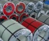 prepainted color steel coil