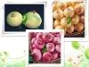 fresh Chinese onion