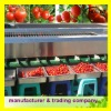 tomato grading machine 2-3 ton per hour