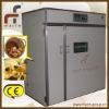 chicken incubators for sale