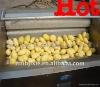 2012 best sale potato washing machine 13071070895