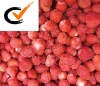 strawberry (a13)