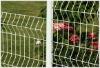 wire mesh fence(garden)