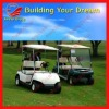 2012 Hot Selling Golf Cart with 2 Seats 48V
