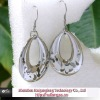 2012 new stainless steel earrings
