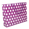 2012 hot sell paper carrier bags with good price
