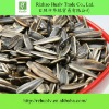 Sunflower Seed Ton Price