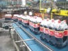 Bottle Chain Conveyor system