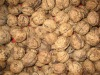 walnut inshell(Yunnan high quality fresh walnut)