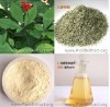 White/Red Ginseng Root Pharmaceutical