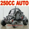 Automatic 250cc Go Kart