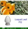 high quality Ursolic acid/Loquat Leaf Extract(p.e.)