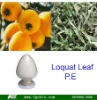 high quality Ursolic acid/Loquat Leaf Extract(p.e.)