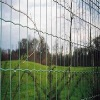 Plastic coated euro welded wire fencing