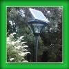 Solar Lamp Gardens