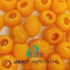 Canned Loquat in Syrup